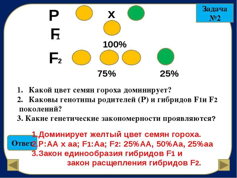 F 1 Задача №3 50% 50% 1.Каковы генотипы родителей (Р) морских свинок, если в ...