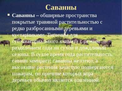 Саванны Саванны – обширные пространства покрытые травяной растительностью с р...