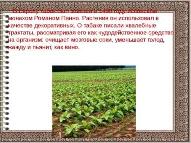 В Европу табак был завезён в 1496 году испанским монахом Романом Панно. Расте...