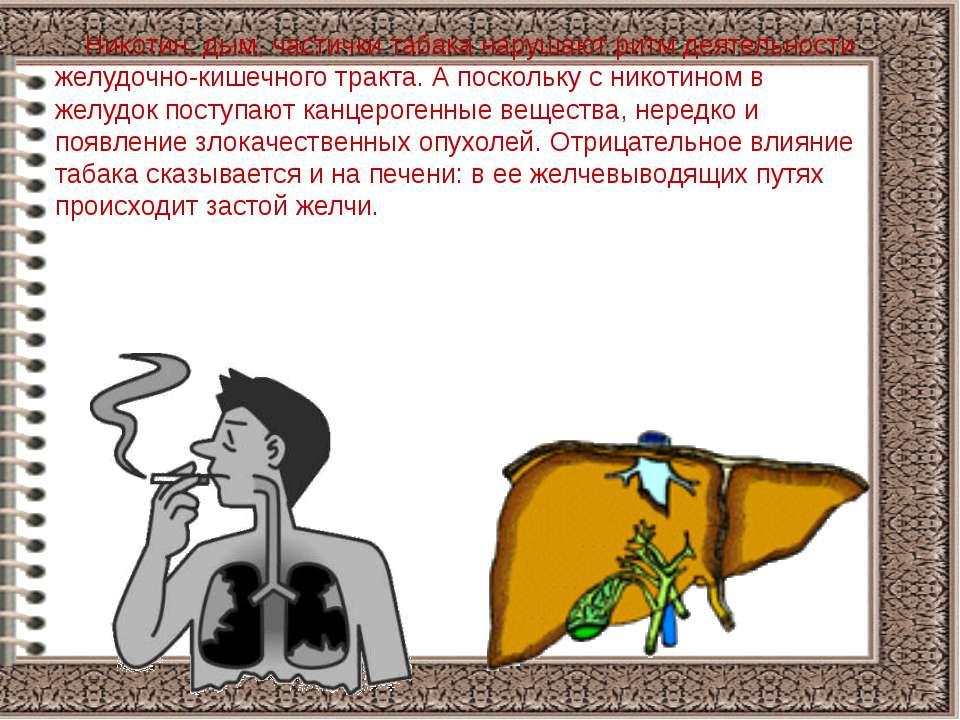 Никотин, дым, частички табака нарушают ритм деятельности желудочно-кишечного ...