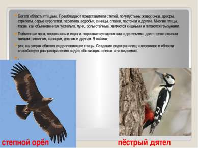 Богата область птицами. Преобладают представители степей, полупустынь: жаворо...