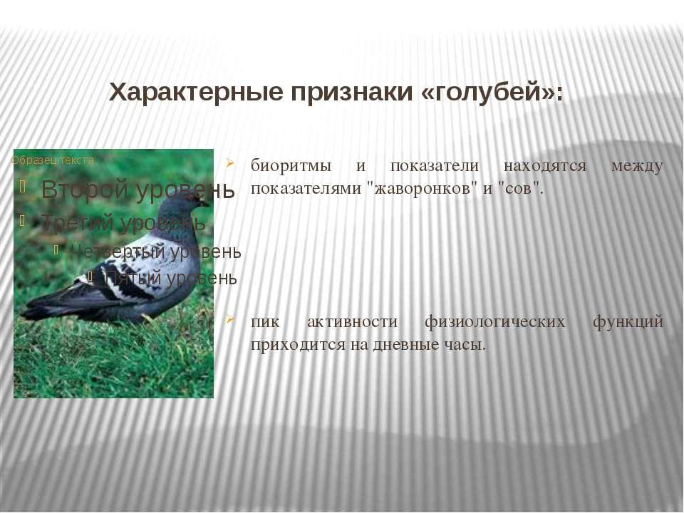 Характерные признаки «голубей»: биоритмы и показатели находятся между показат...
