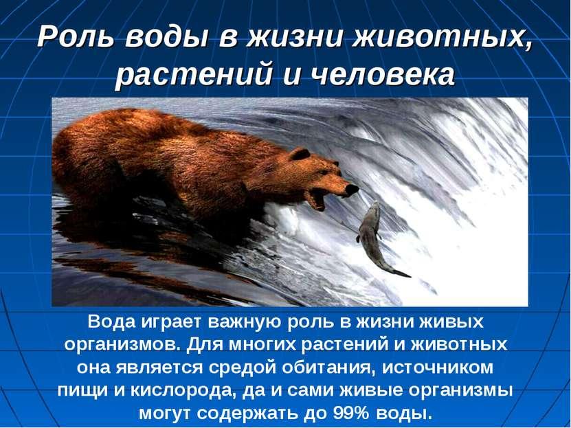 Роль воды в жизни животных, растений и человека Вода играет важную роль в жиз...