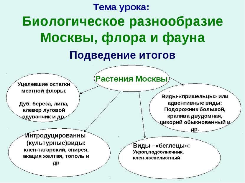 Тема урока: Биологическое разнообразие Москвы, флора и фауна Подведение итого...