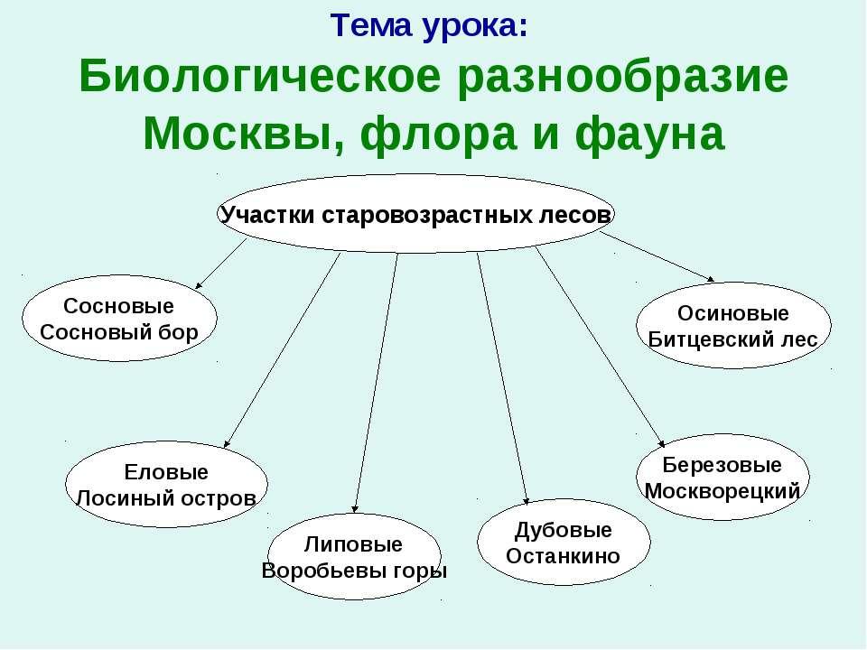Тема урока: Биологическое разнообразие Москвы, флора и фауна Участки старовоз...
