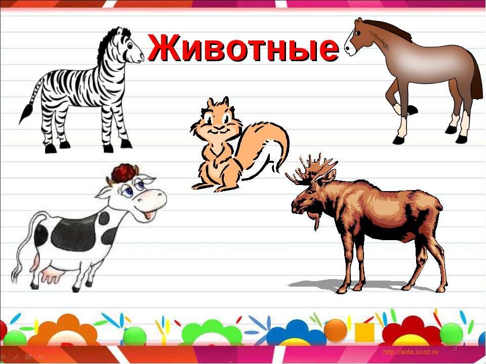 Животные *