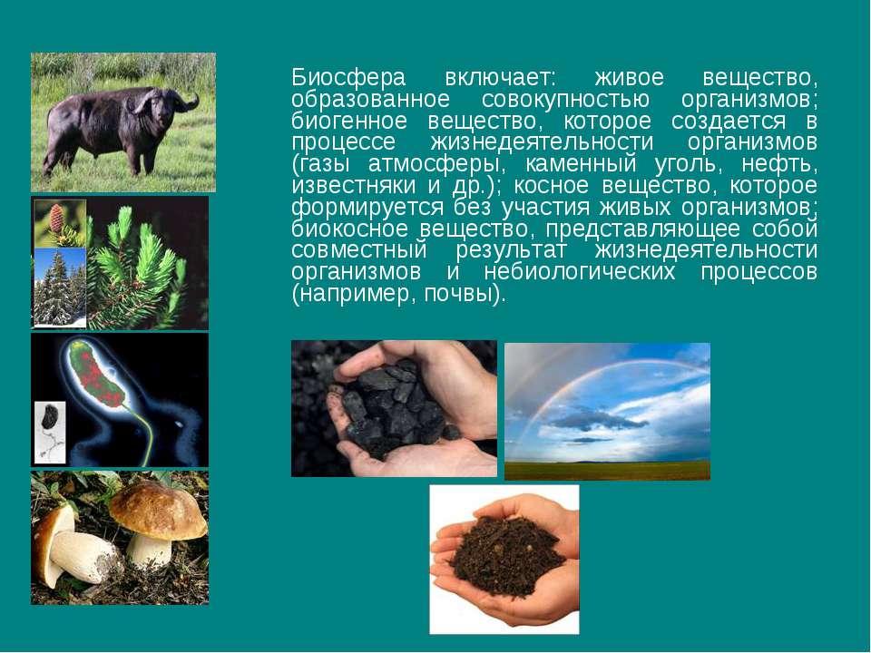 Биосфера включает: живое вещество, образованное совокупностью организмов; био...