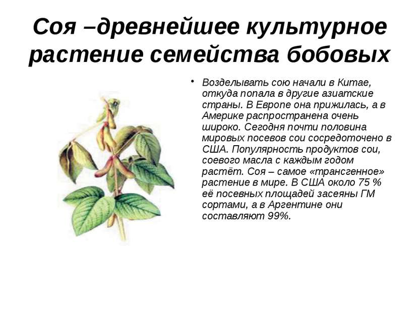 Соя-продукт XXIвека!