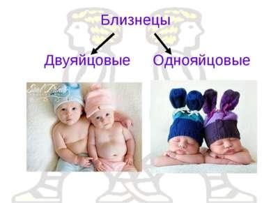 Близнецы Двуяйцовые Однояйцовые