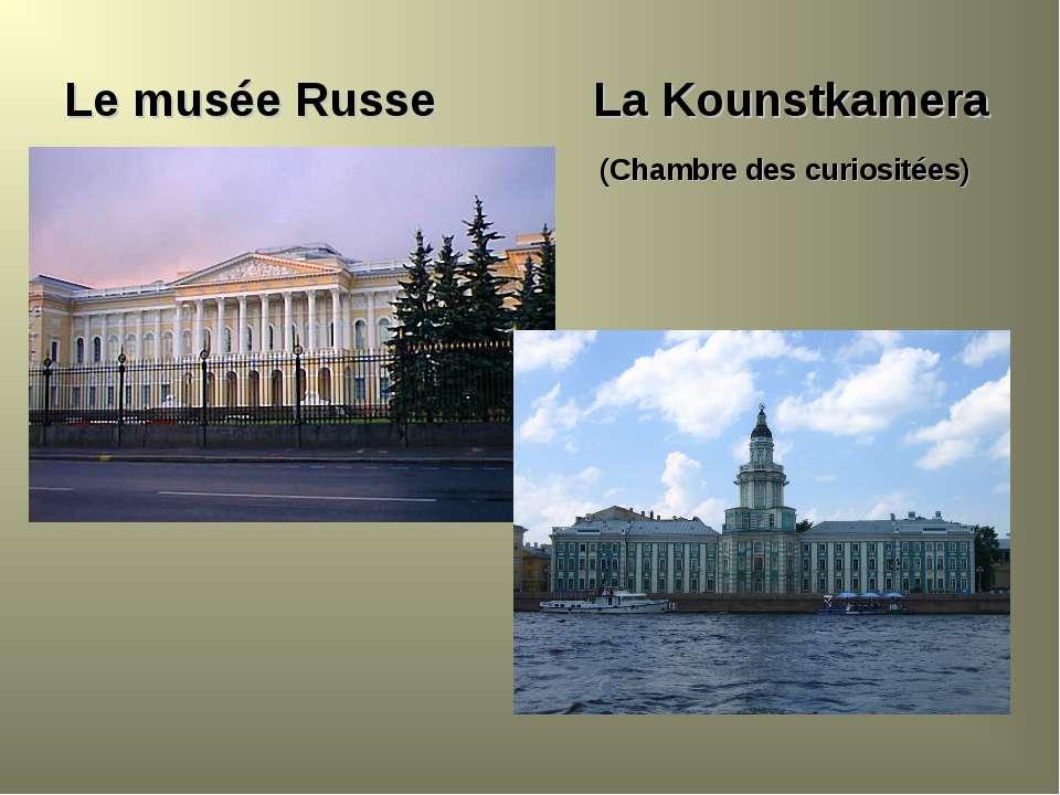 Le musée Russe La Kounstkamera (Chambre des curiositées)
