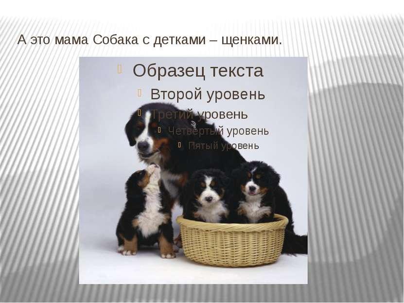А это мама Собака с детками – щенками.