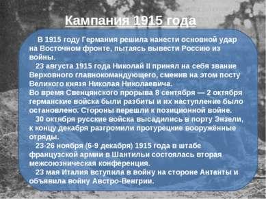 В 1915 году Германия решила нанести основной удар на Восточном фронте, пытаяс...