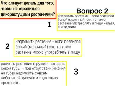 Вопрос 2 1 2 3