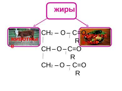 жиры животные Раститель-ные СН2 – О – C=О R СН – О – С=О R CН2 – О – С=О R