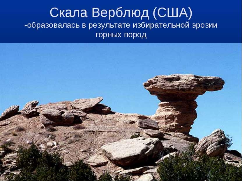Скала Верблюд (США) -образовалась в результате избирательной эрозии горных пород