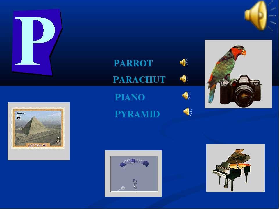 PARACHUT PARROT PIANO PYRAMID