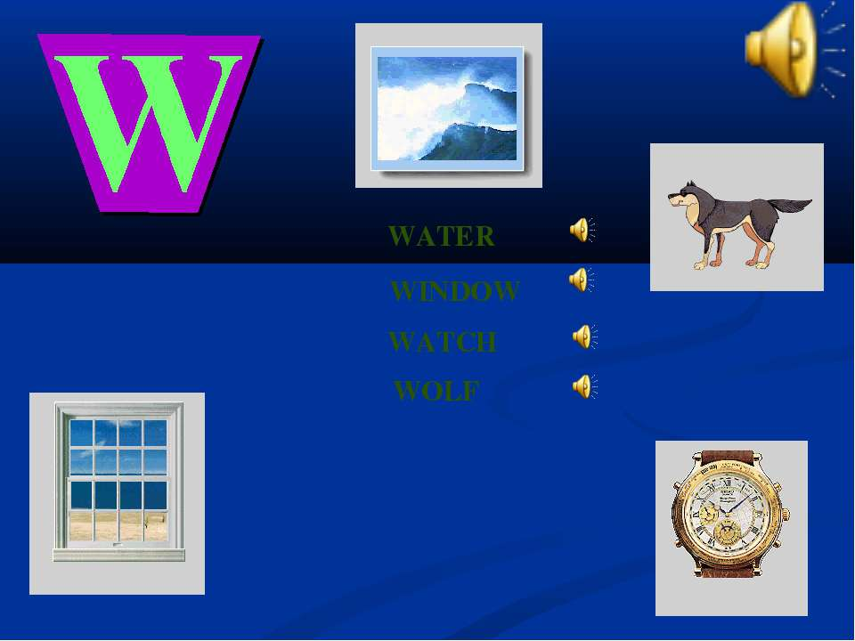 WATCH WINDOW WATER WOLF