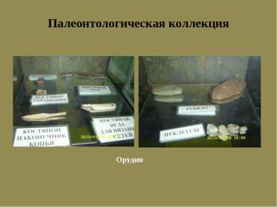 Палеонтологическая коллекция Орудия