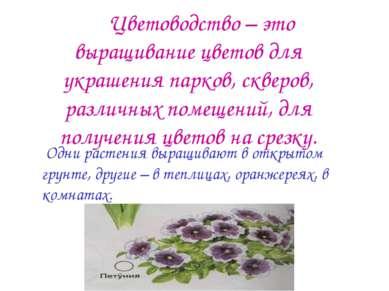 Цветоводство – это выращивание цветов для украшения парков, скверов, различны...