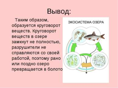 Вывод: Таким образом, образуется круговорот веществ. Круговорот веществ в озе...