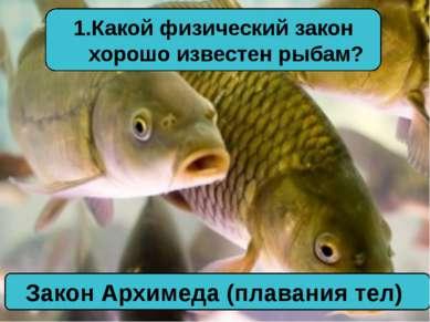 Какой физический закон хорошо известен рыбам? Закон Архимеда (плавания тел)