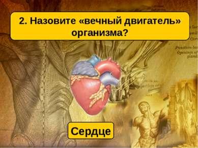 2. Назовите «вечный двигатель» организма? Сердце