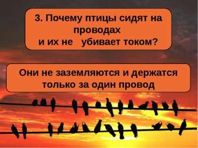 3. Почему птицы сидят на проводах и их не убивает током? Они не заземляются и...