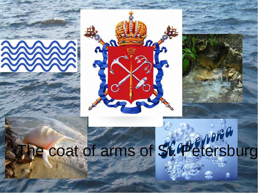 The coat of arms of St. Petersburgh