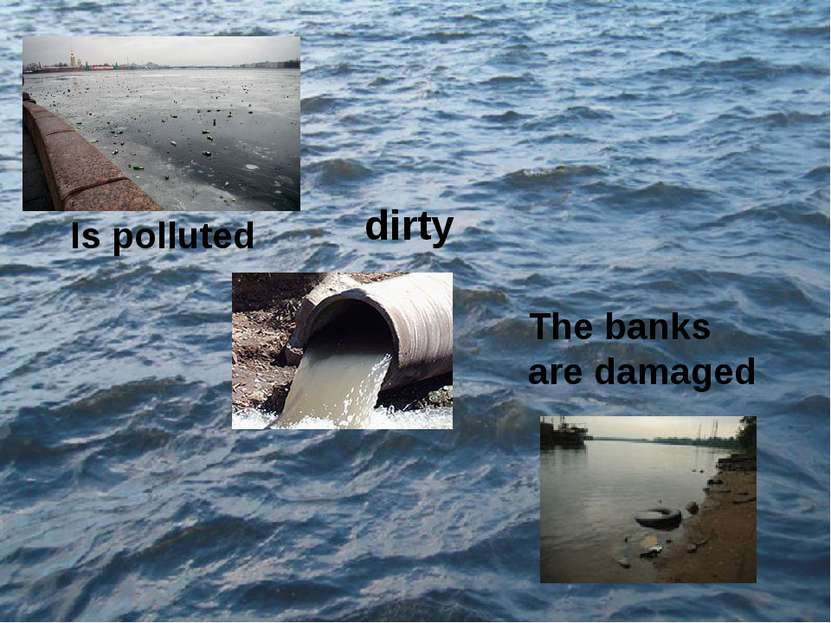 Is polluted The banks are damaged dirty