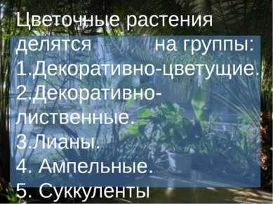 Цветочные растения делятся на группы: 1.Декоративно-цветущие. 2.Декоративно-л...