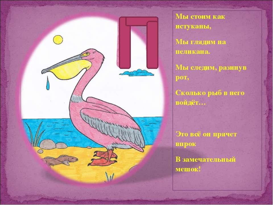Мы стоим как истуканы, Мы глядим на пеликана. Мы следим, разинув рот, Сколько...