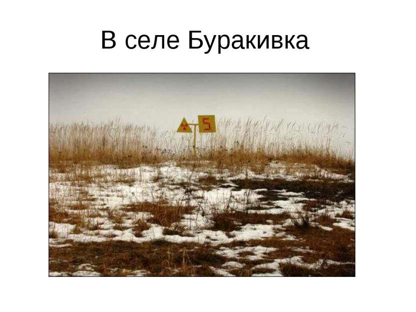 В селе Буракивка