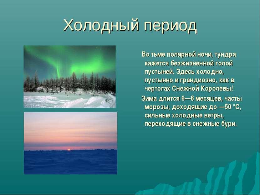 Холодный период Во тьме полярной ночи, тундра кажется безжизненной голой пуст...