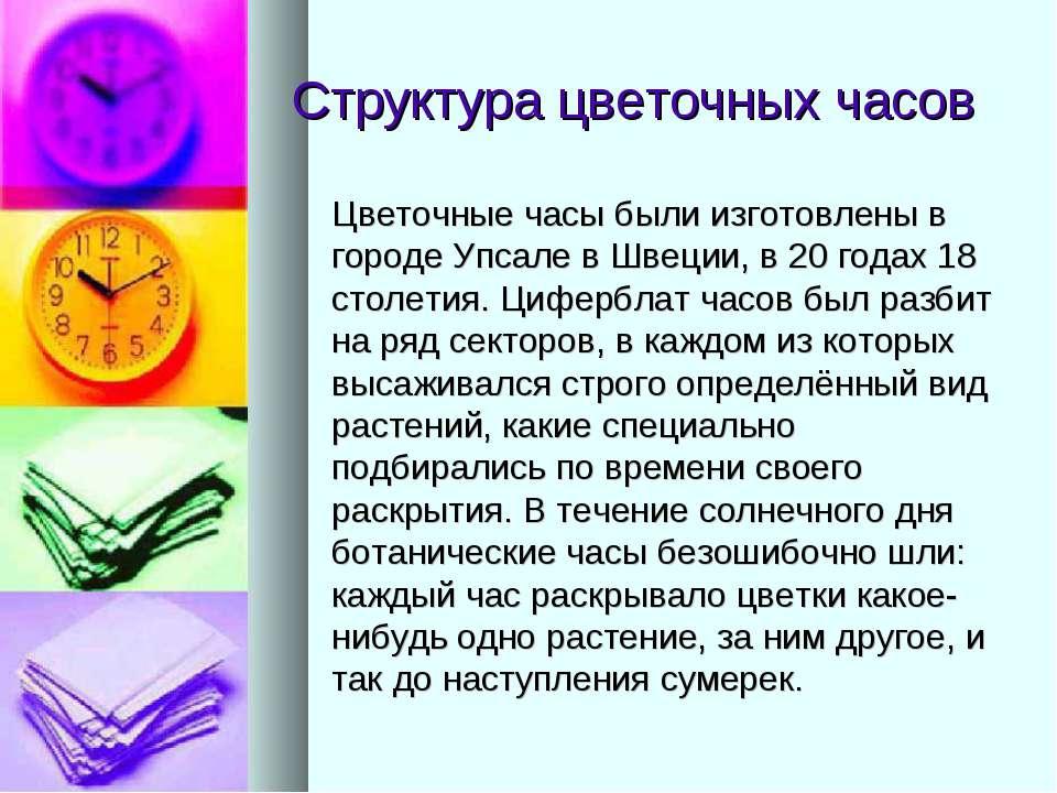 Структура цветочных часов Цветочные часы были изготовлены в городе Упсале в Ш...