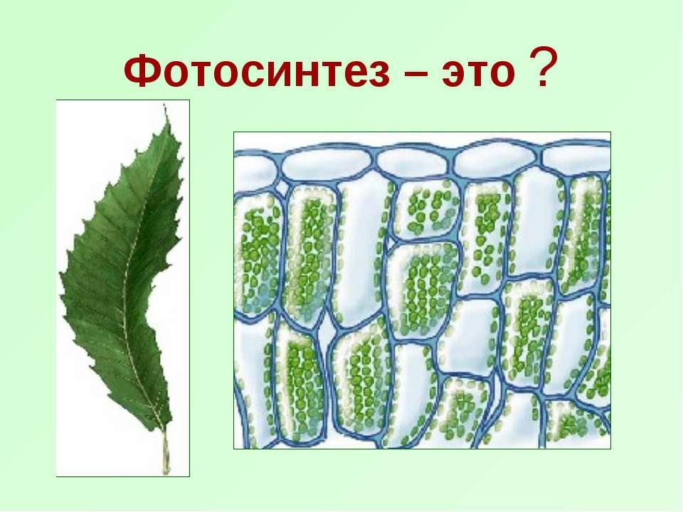 Фотосинтез – это ?