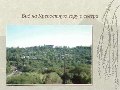 Вид на Крепостную гору с севера
