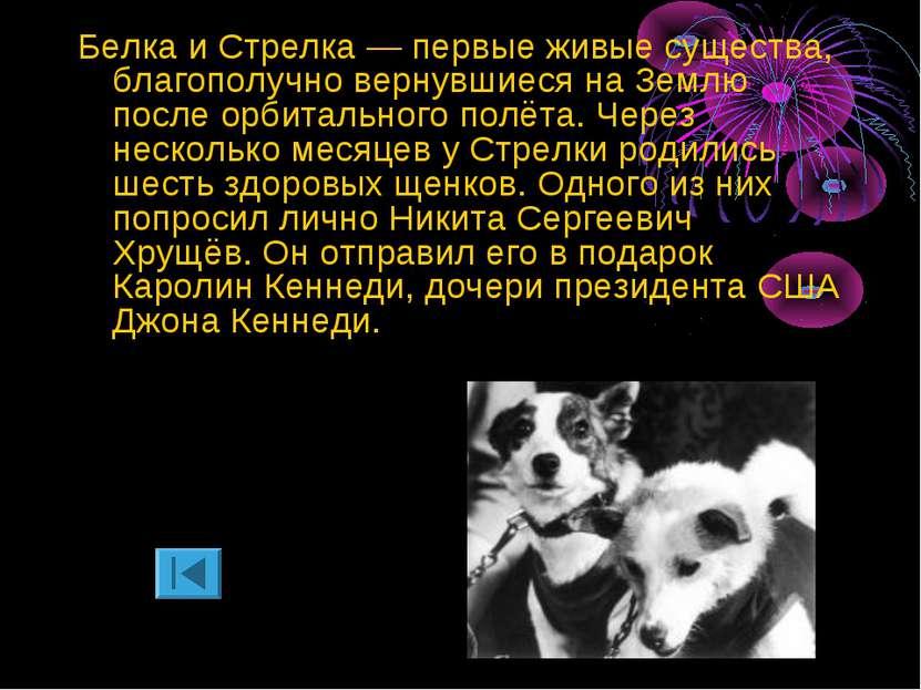 Белка и Стрелка — первые живые существа, благополучно вернувшиеся на Землю по...