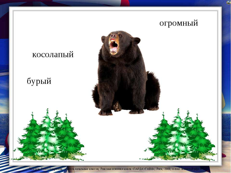 косолапый бурый огромный Лазарева Лидия Андреевна, учитель начальных классов,...