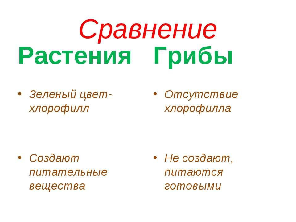Сравнение Зеленый цвет-хлорофилл Создают питательные вещества Грибы Отсутстви...