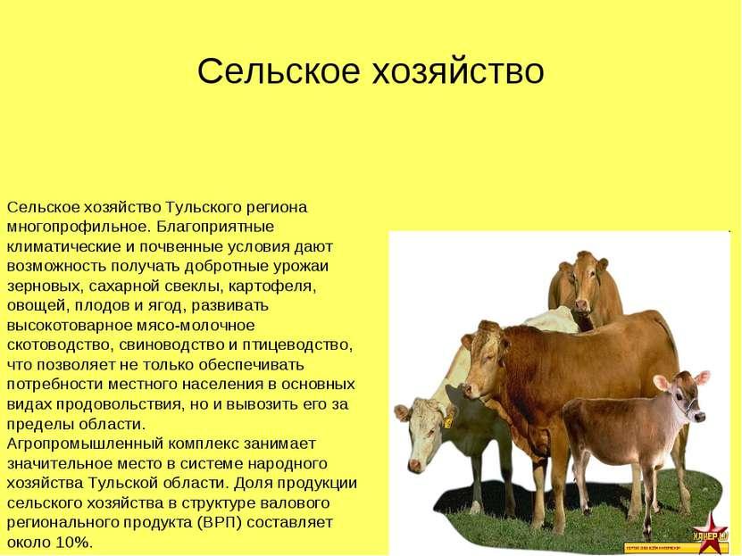Сельское хозяйство Тульского региона многопрофильное. Благоприятные климатиче...