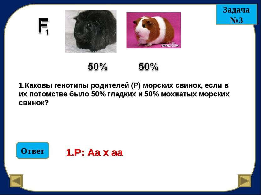 Задача №3 1.Каковы генотипы родителей (Р) морских свинок, если в их потомстве...