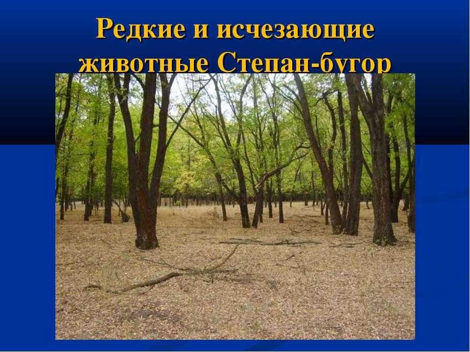 Редкие и исчезающие животные Степан-бугор
