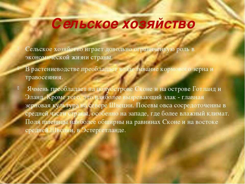 Сельское хозяйство Сельское хозяйство играет довольно ограниченную роль в эко...