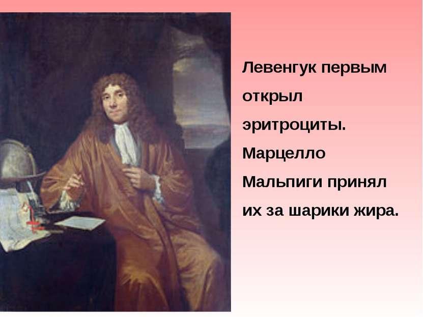 Левенгук первым открыл эритроциты. Марцелло Мальпиги принял их за шарики жира.