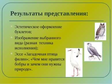 Результаты представления: Эстетическое оформление буклетов; Изображение выбра...