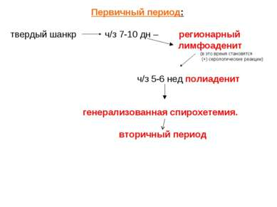 Первичный период: твердый шанкр ч/з 7-10 дн – регионарный лимфоаденит (в это ...