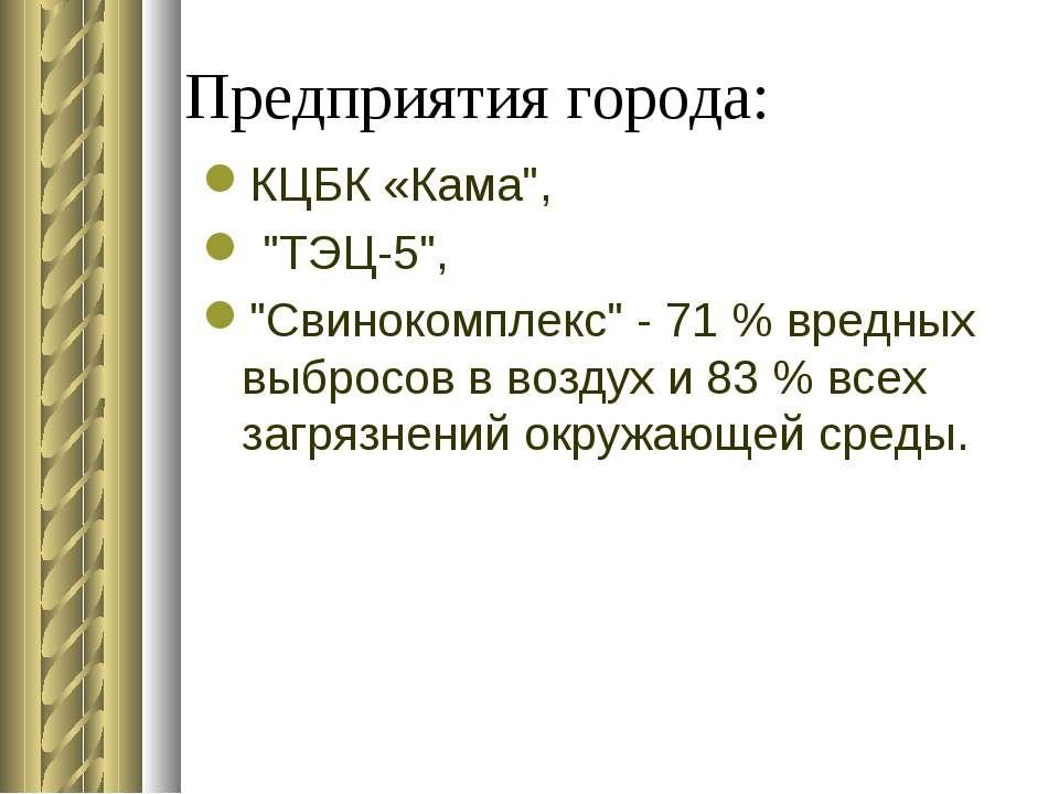 """Предприятия города: КЦБК «Кама"""", """"ТЭЦ-5"""", """"Свинокомплекс"""" - 71 % вредных выбр..."""