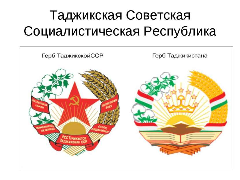 Таджикская Советская Социалистическая Республика