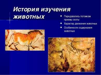 История изучения животных Передавались потомкам приемы охоты Характер движени...
