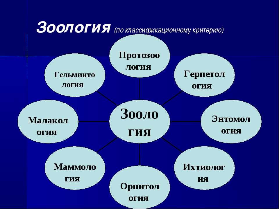Зоология (по классификационному критерию)